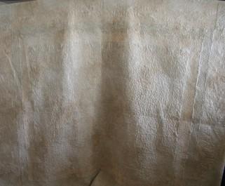 Star Autumn Quilt (back)