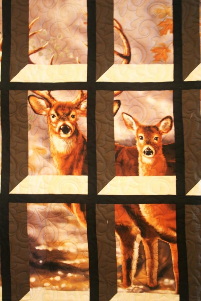 Deer Through the Window (close up)