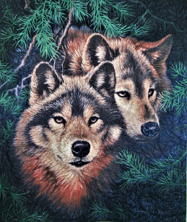 Pair of Wolves (close up)