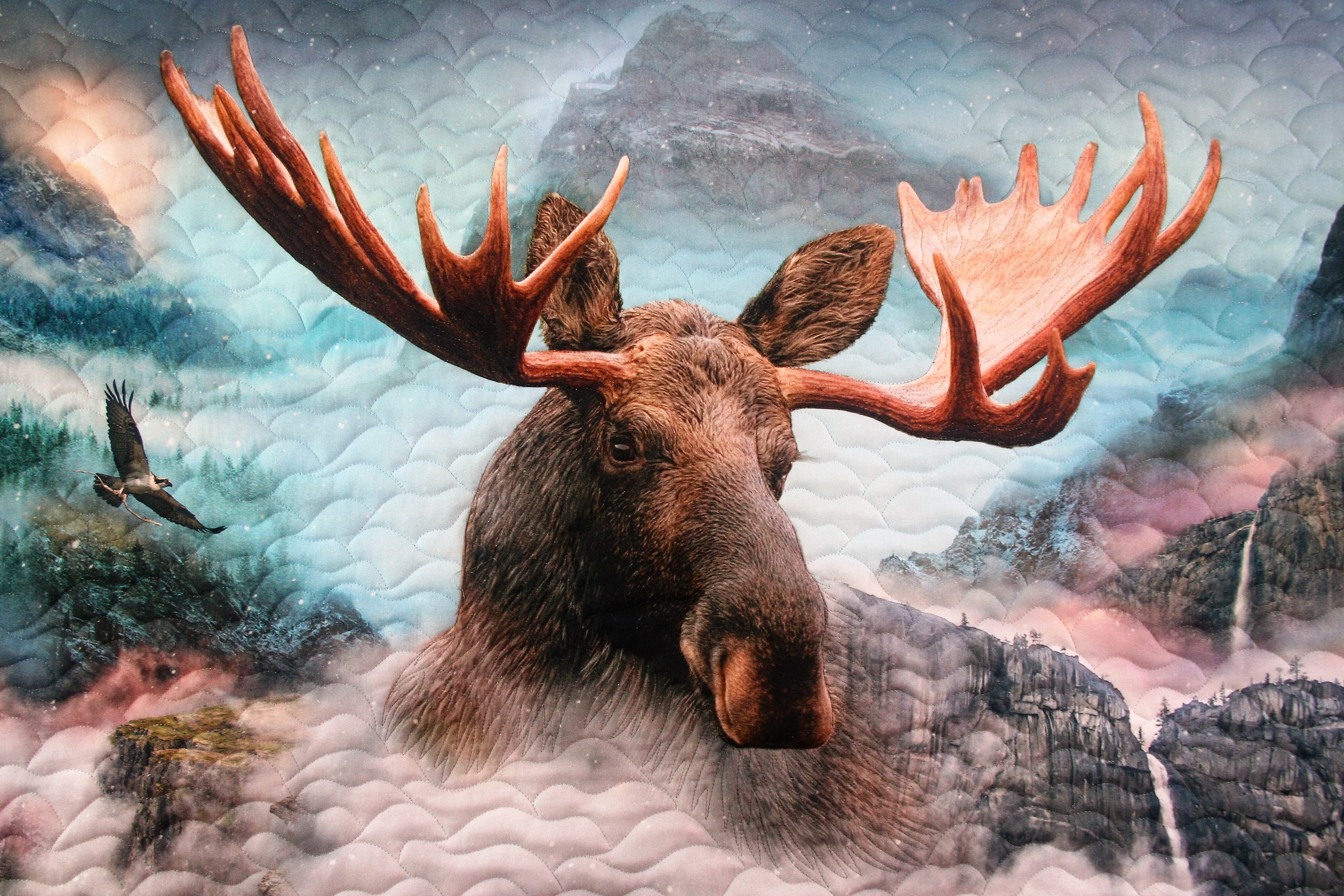 Moose in the Clouds (close up 2)